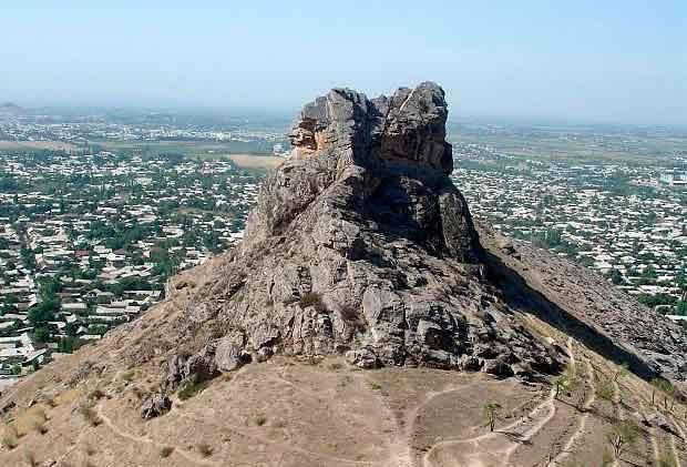 sulayman gora