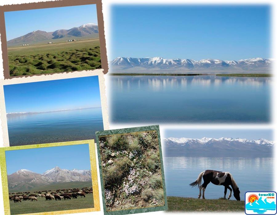 Кыргызское озеро Сонкель